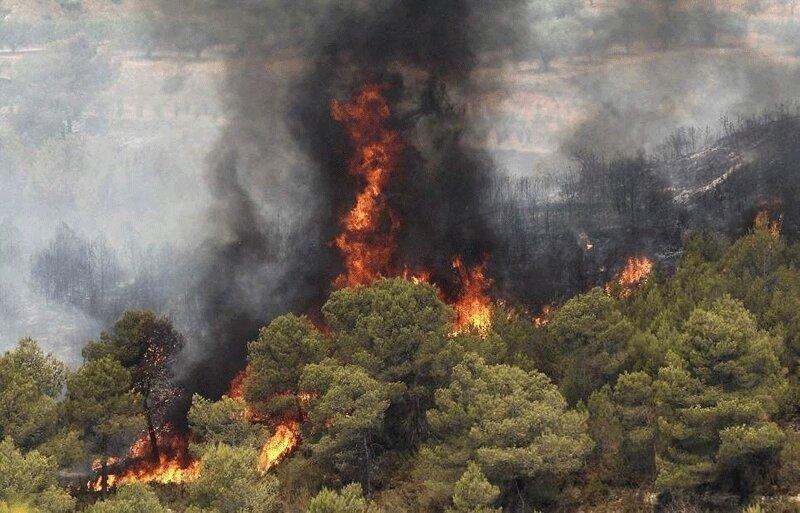 افزایش 30 درصدی آتش سوزی جنگل ها
