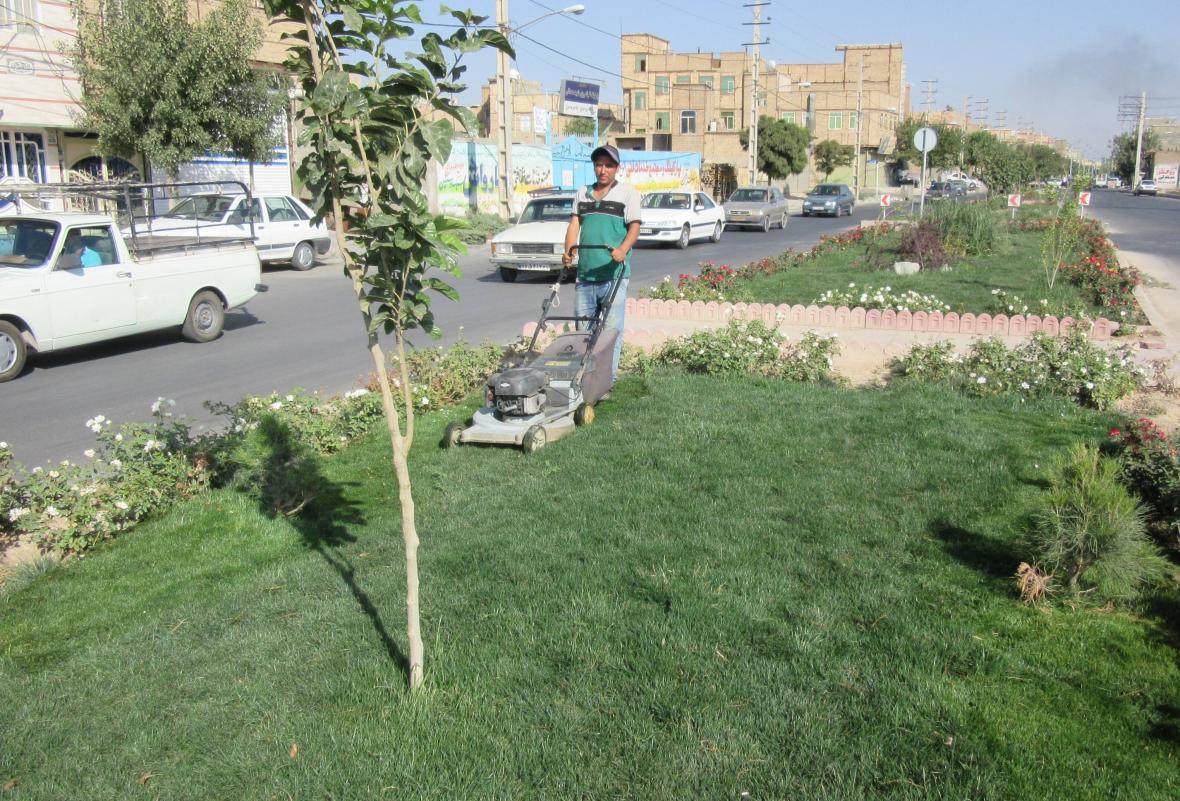 اجرای عملیات کاشت چمن در پارک های شهر ایلام